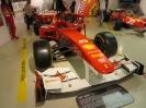 Ferrarimeseum_14