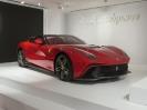 Ferrarimeseum_35
