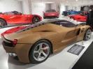 Ferrarimeseum_48