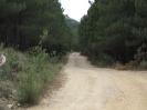 Rally van Sardinië 2013_24