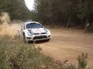 Rally van Sardinië 2013_35